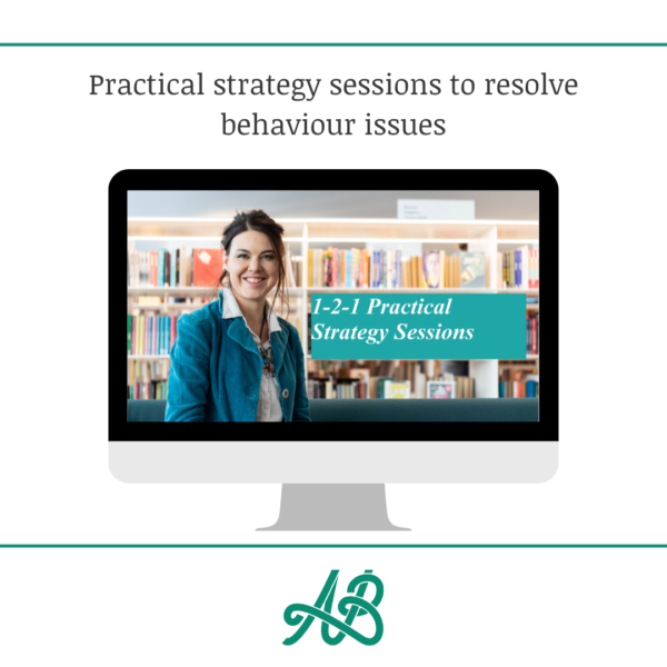 Practical strategy sessions to resolve behaviour issues